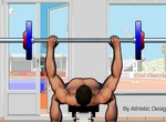 Pers-atletika-bench-press